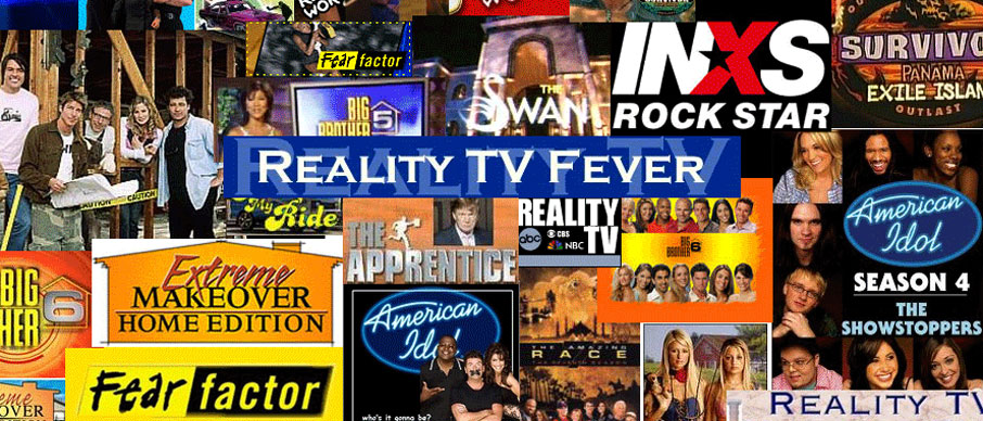 essays on reality shows on tv